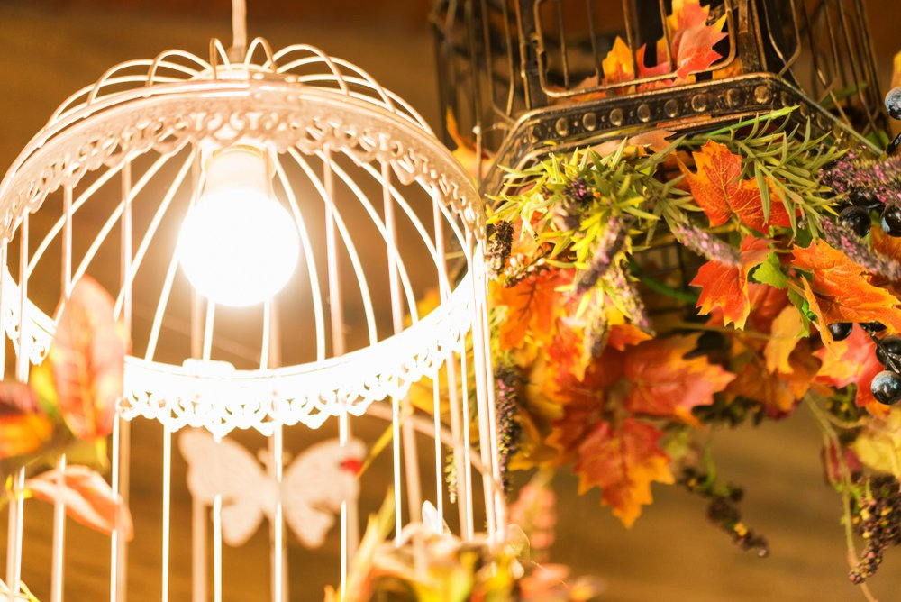 Caged Chandeliers -